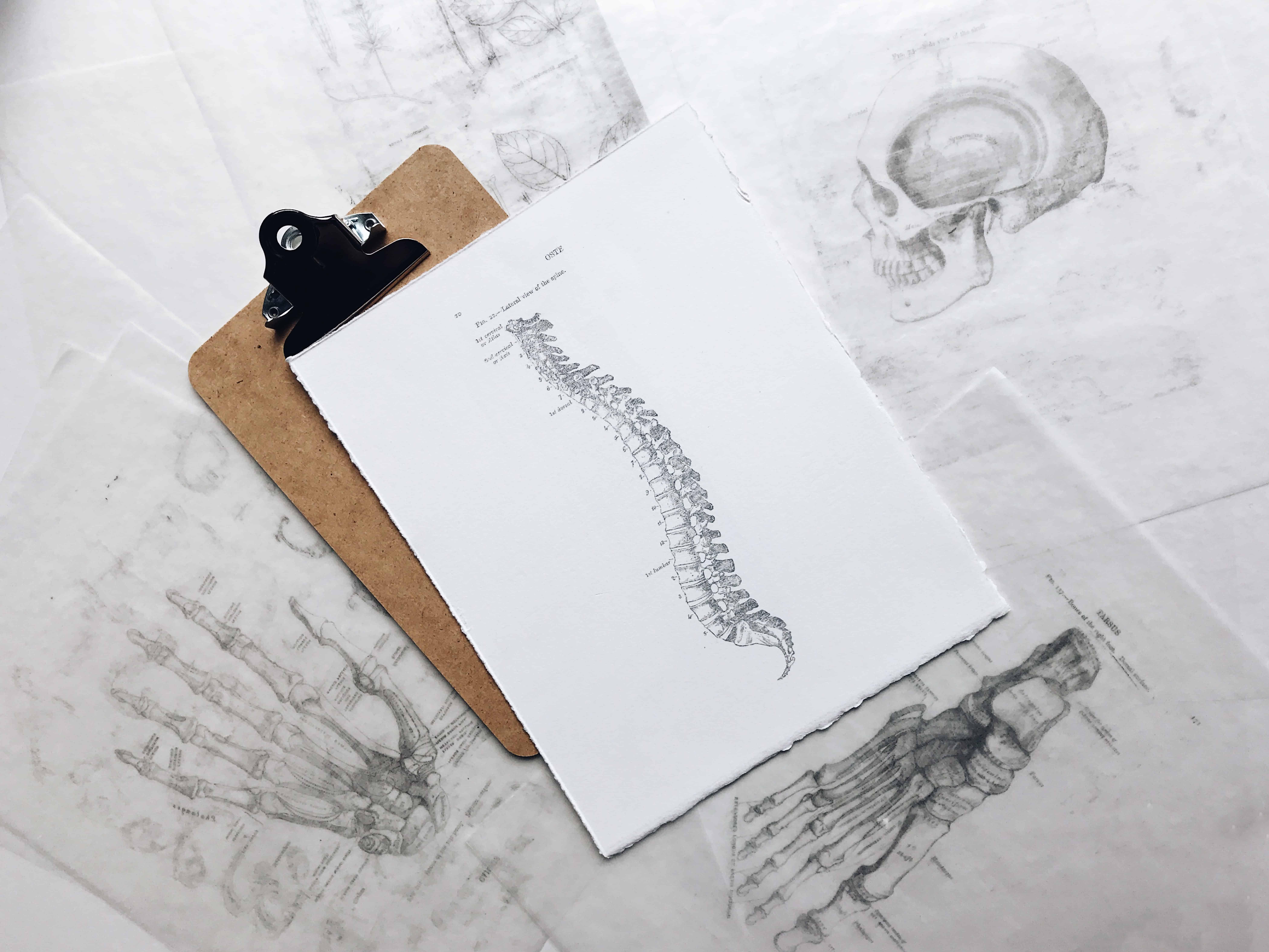 joyce mccown IG96K HiDk0 unsplash - Lower Back Pain & Sciatica